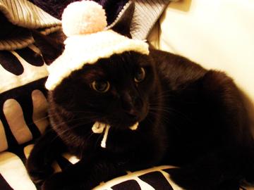 Hat15