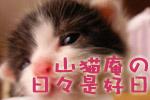 山猫庵の日々是好日