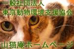一般社団法人東京動物環境支援協会